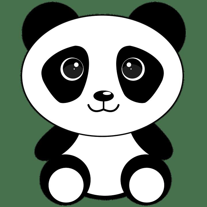 Aprendiendo Chino Caracteristicas E Informacion Del Oso Panda