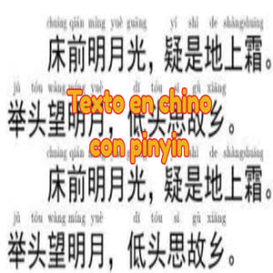 texto en chino